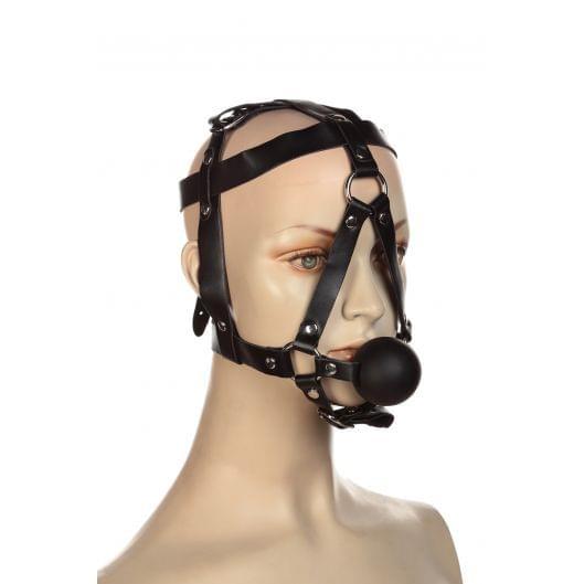 Сбруя на голову с кляпом шариком (1151-17)